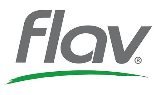 Flav's Logo
