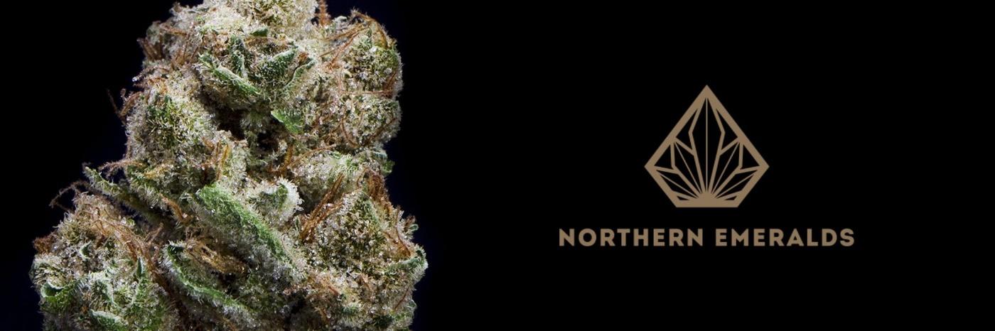 Northern Emeralds banner